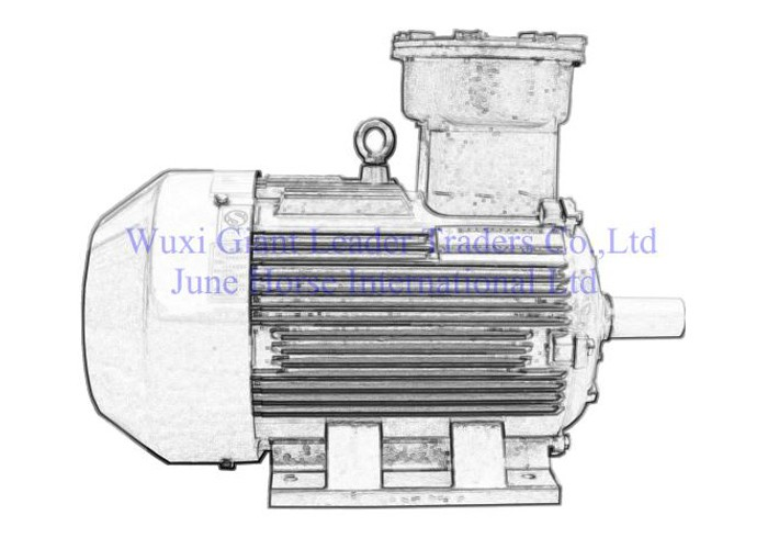 Low Voltage Dust Flameproof Electric Motors
