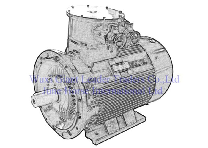 Low Voltage Explosion-proof Electric Motors for Workig face in Underground Minin