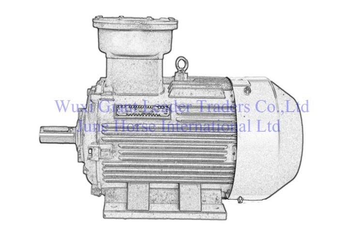 Low Voltage Flame-poof Electric Motors-YBX3 Series