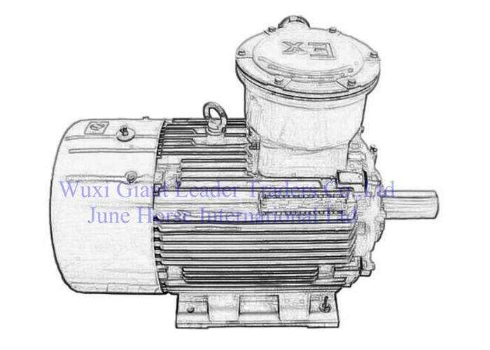 Low Voltage Flamerpoof Electric Motors for Factory Use