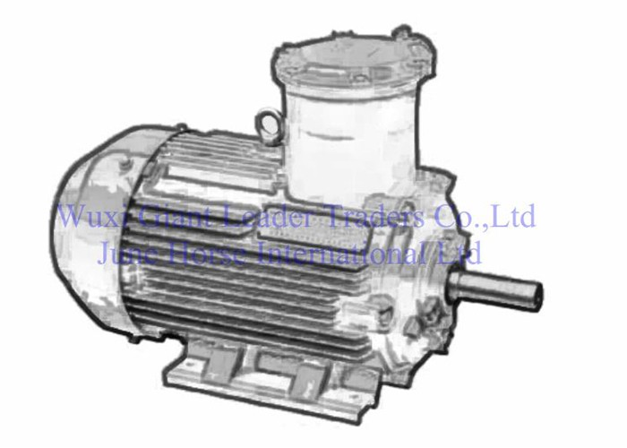 Low Voltage Flamerpoof Electric Motors for Factory Use 63-355 Series-3rd generat