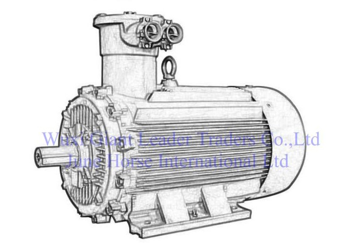 Low Voltage Large Power  Flamerpoof Electric Motors