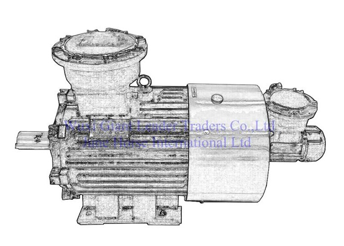 Variable-Frequency and Variable-speed Flame-proof Electric Motors