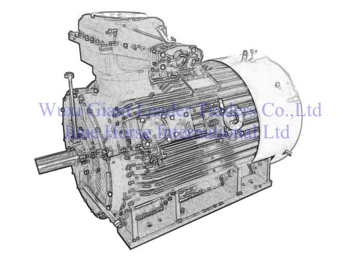 High Voltage Flameproof Electric Motors 400-450 Series