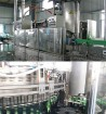 Filler and Capper/Filling Capping Machine15000BPH